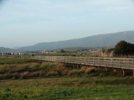 Footpath at Los Lances